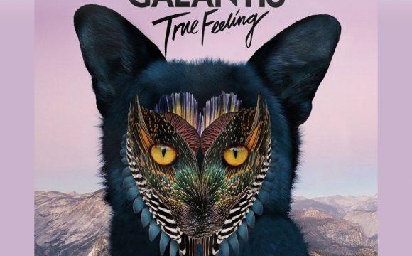 Danskraker 22 juli 2017: Galantis – True Feeling