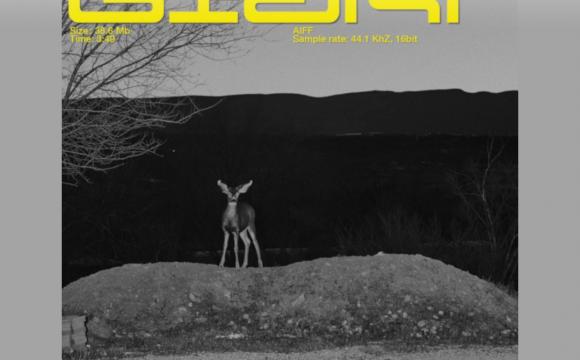 Danskraker 19 januari 2019: Calvin Harris, Rag'n'Bone Man – Giant